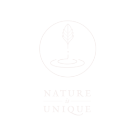 Niu_logo_light_transparentbg